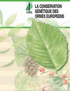 la conservation génétique des ormes européens